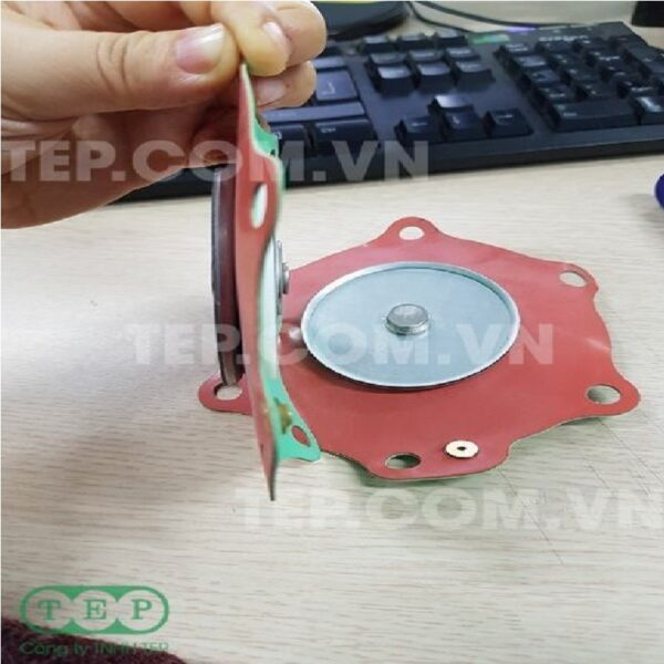 Màng van điện từ Teflon - Main Diaphragm